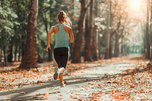 Answer is Fitness - Fall Jogging